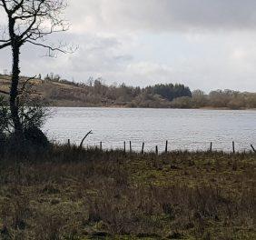 Carrickport Lough
