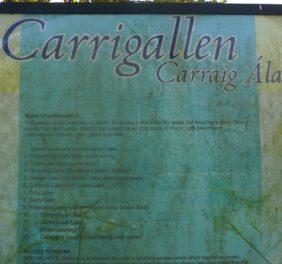 Town Lake Carrigallen