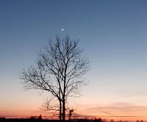 Crescent Moon over Drumshanbo