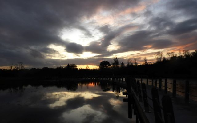 Acres Lake Boardwalk