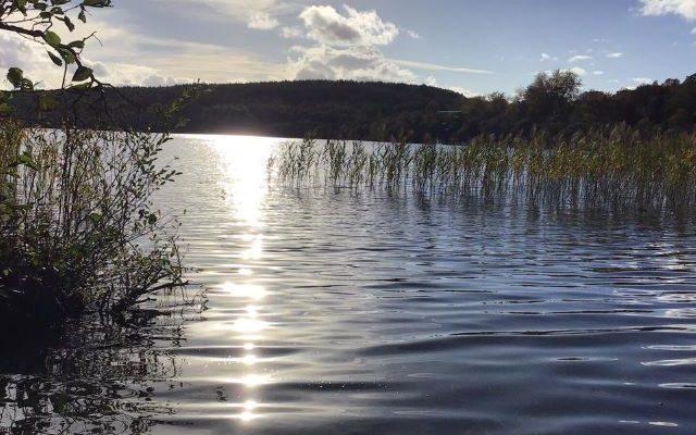 Killegar Lake and Wood