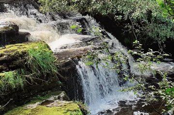 Fowley's Falls