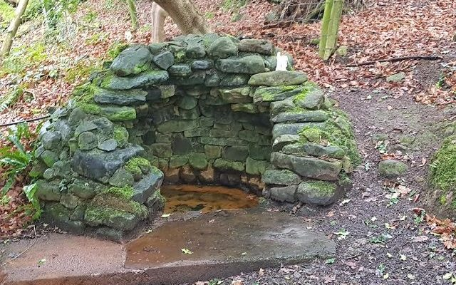 Saint Hugh's Well