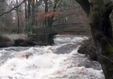 River Bonet